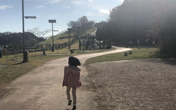 公園内の写真