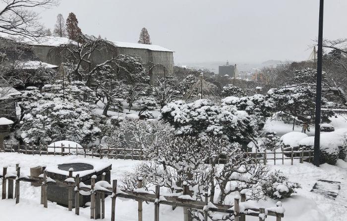 雪景色のお庭